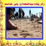 زائر پیاده سید الشهداء ولی خداست