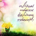 گل های مریم ازگل نرگس معطرند