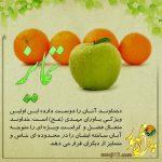 «محبت خداوند نسبت به یاوران مهدی»اولین ویژگی یاران امام (عج) در عصر ظهور-۱۸