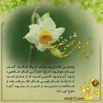 «ویژگی های فردی امام»پنجمین عامل پیروزی امام زمان(عج)-۸