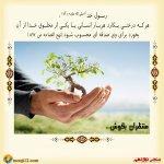 منتظران امام زمان برای سلامتی امامشان درخت می کارند